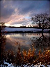 Winter pond.