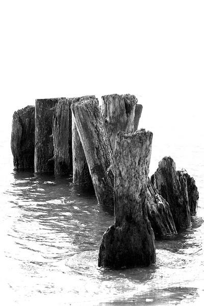 logs by Nokin of Nonac