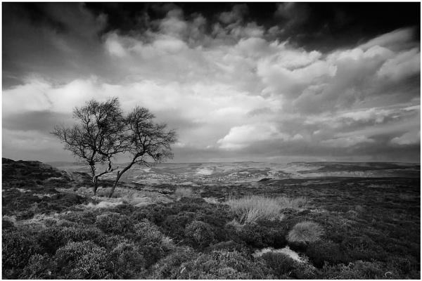 Peak Moorlands by ian.daisley