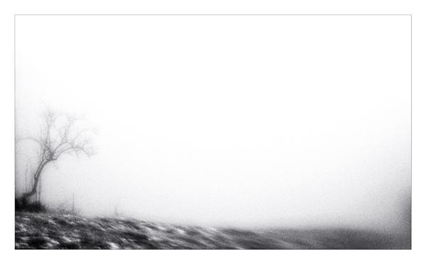 landscape in the mist.....(part II) by bliba