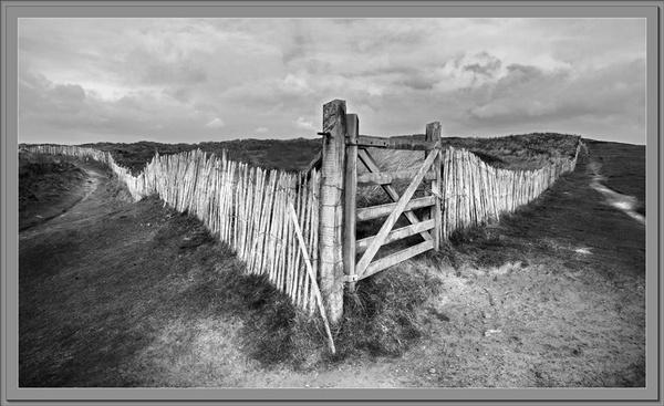 Westward Ho! by Bridie
