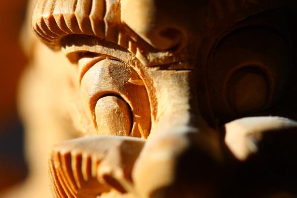 Sandalwood Dragon closeup by RokGeetar