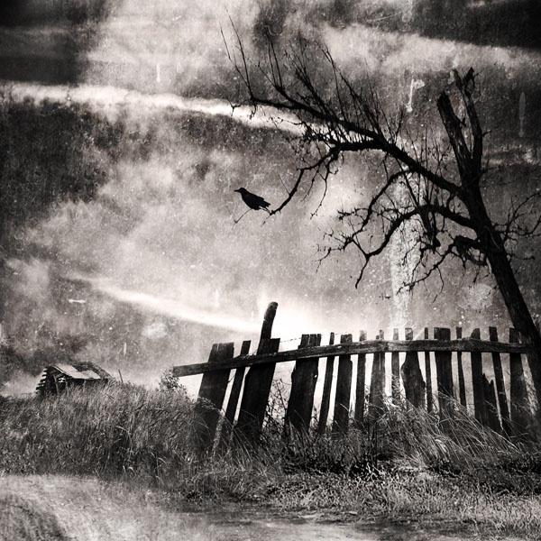 forgotten land... by cristinavenedict