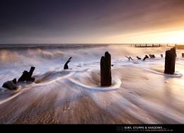Surf, Stumps & Shadows ...