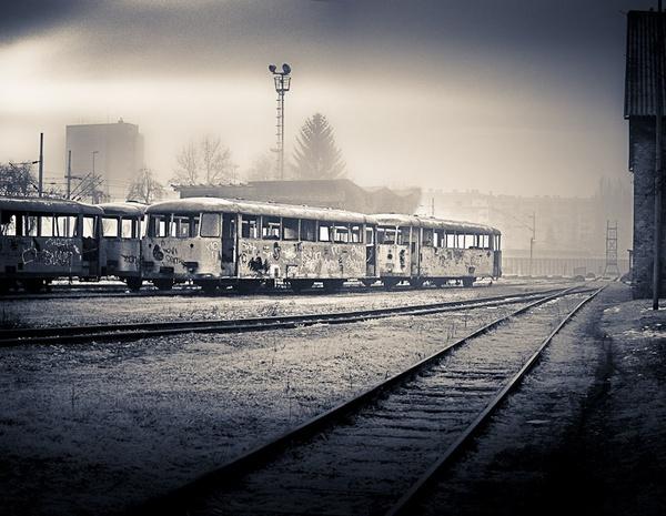 Wagons by Silvijo
