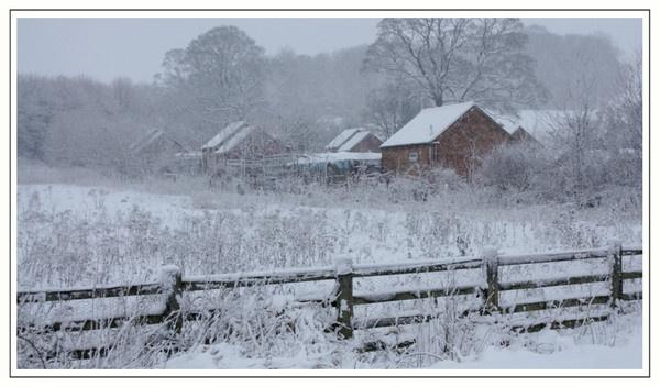 Snow everywhere by Nettles
