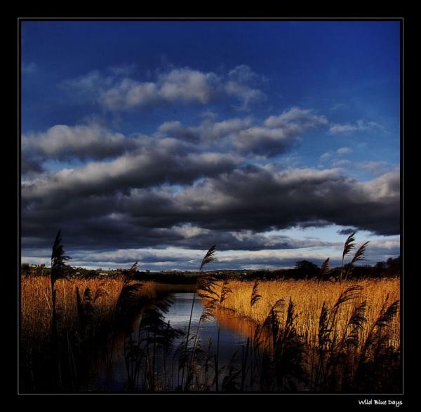 Wild Blue Days by ketch