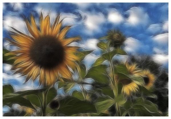 Van Gogh alike by PeterK001