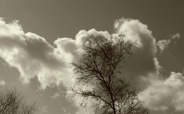 Clouds by essexdean