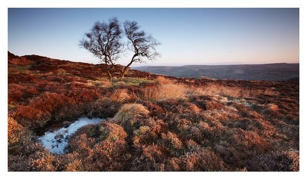 Morning colours by ian.daisley
