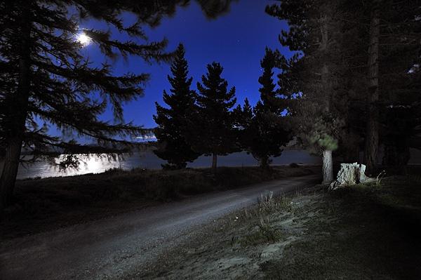 Tekapo Walkway in the Moonlight by mcsimeyb