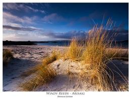 Windy Reeds - Arisaig