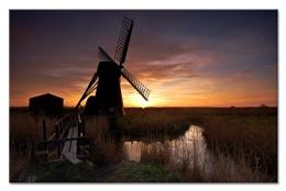 Mill--er Light
