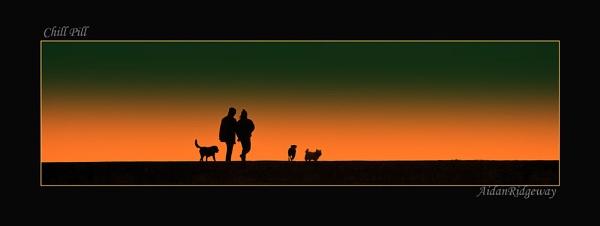 Evening Stroll by Ridgeway