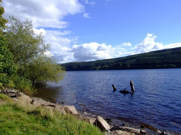 Dolphins in Lake Vrnwy by stevieasp