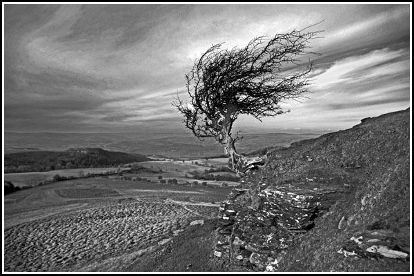 windy ridge by bill78