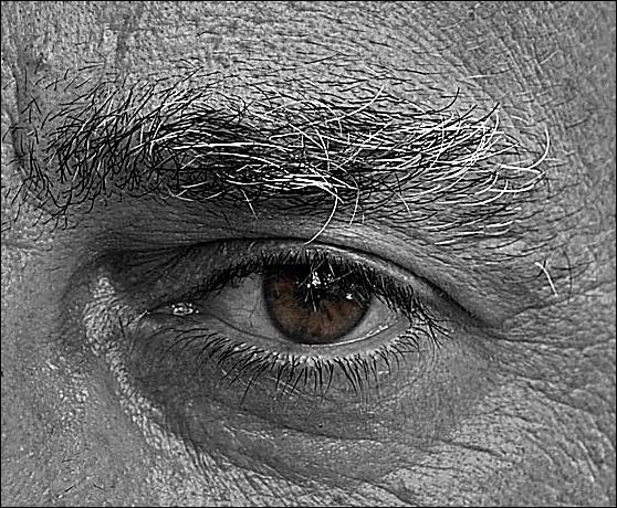 Eye Black and White by amato