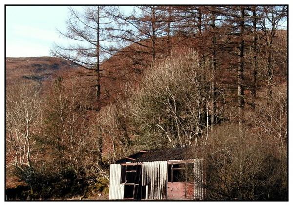 Wrecked hut by scotyboy