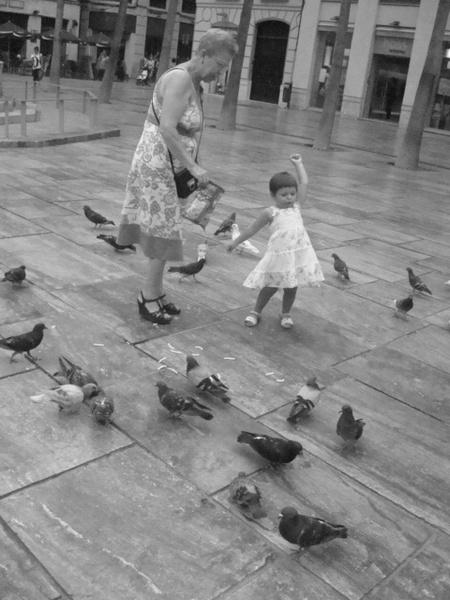 Feeding Birds by emiyellow