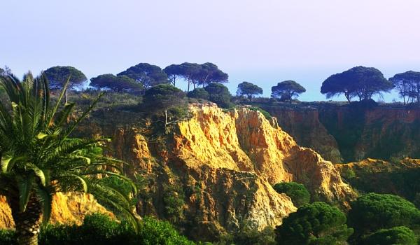 Cliff View by chensuriashi