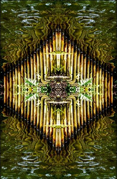 Symmetry by helenlinda