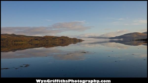 Reflective Morning by Wyn