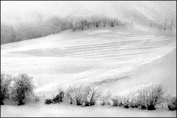 blizzard by bill78