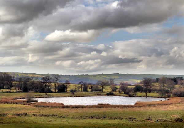 lake vista by Kenfromsot