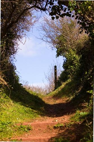 Coastal path by Nick_potts
