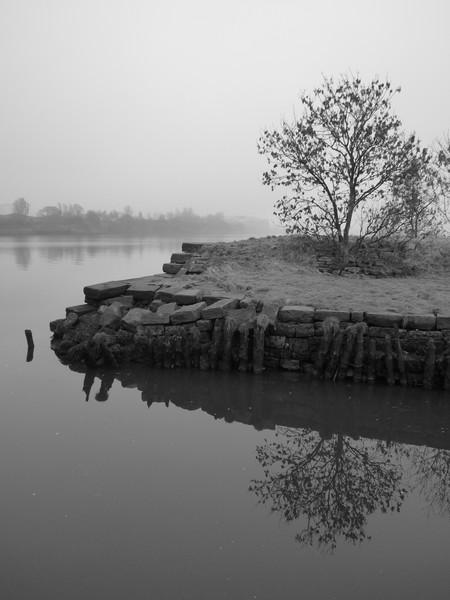 Still Misty Morning