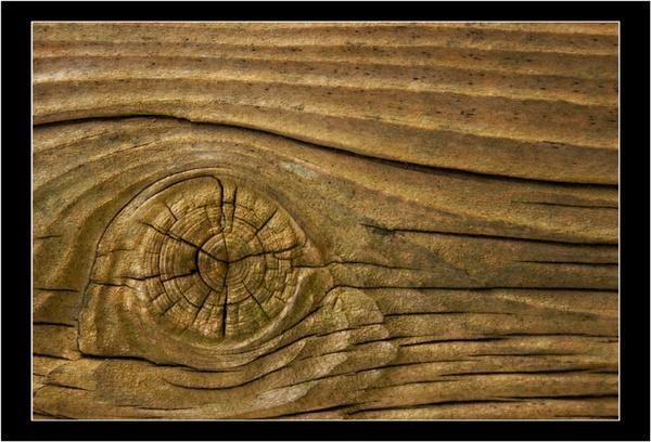 Woodeneye by bombmac