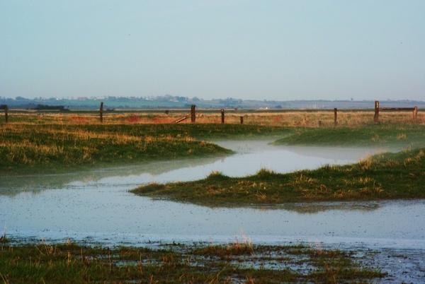 Mist Rolls In by essexdean