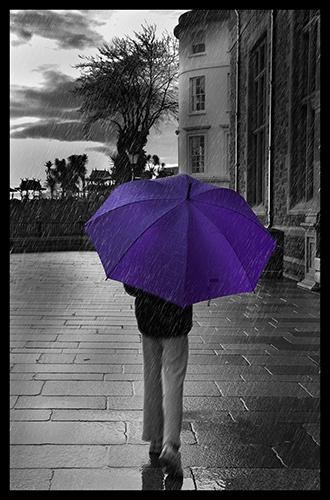 purpule rain by carlton