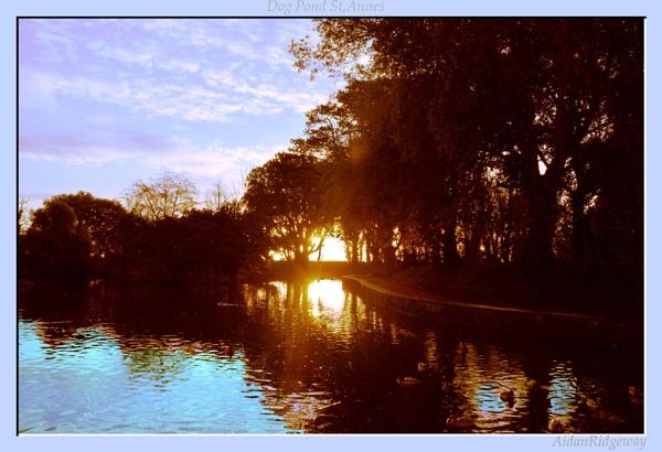 Dog Pond St,Annes by Ridgeway