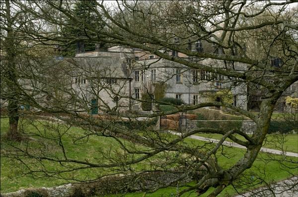 tree house by ducatifogarty