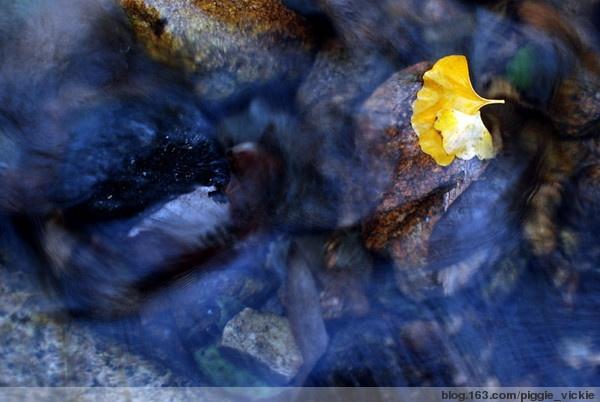 Autumn by piggie_vickie