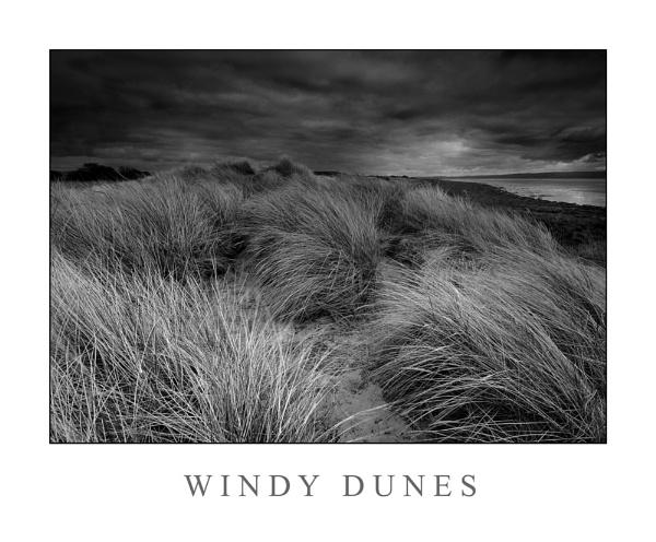 Windy Dunes by Brenty