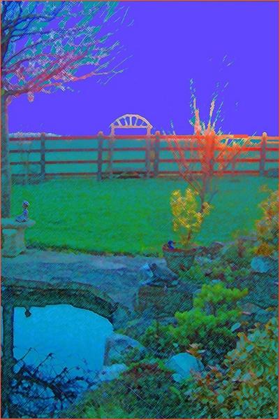 My Garden by LindaSilcock