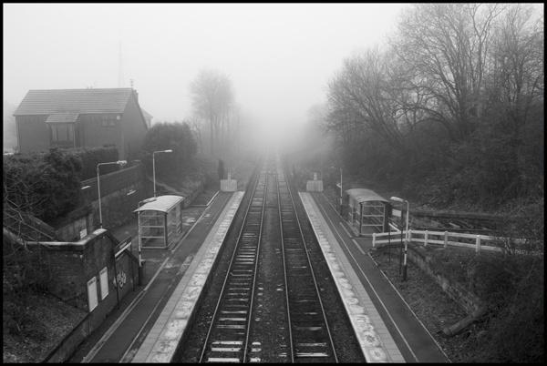 Foggy March Morning by DJLeroy