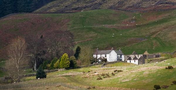 Scottish farm by Steve Cribbin