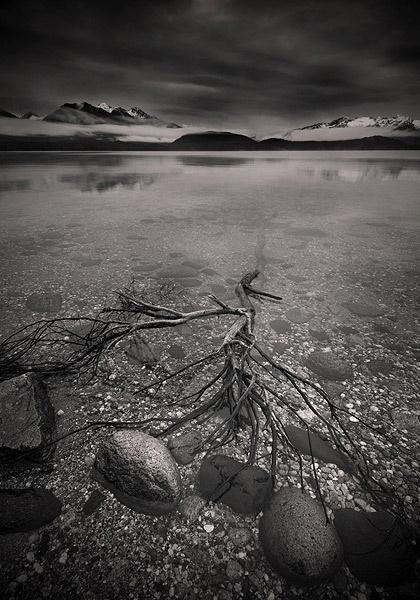 The Dark Lake by steve allsopp