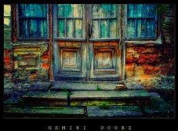 Gemini Doors