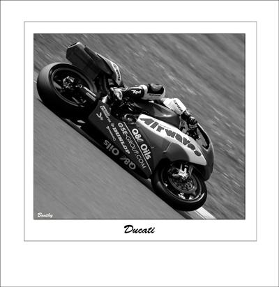 Ducati by shinycb