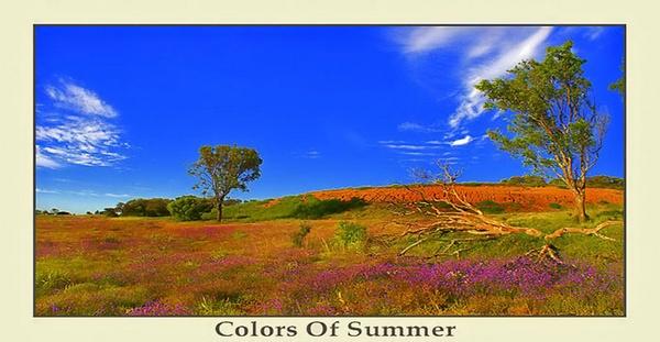 Colors Of An Aussie Summer by Joeblowfromoz