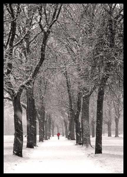 Winter Walker by Nothern_Licht