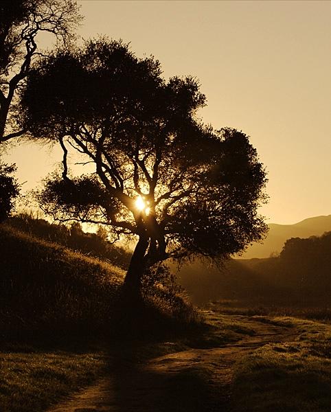 Sunset by paulenes