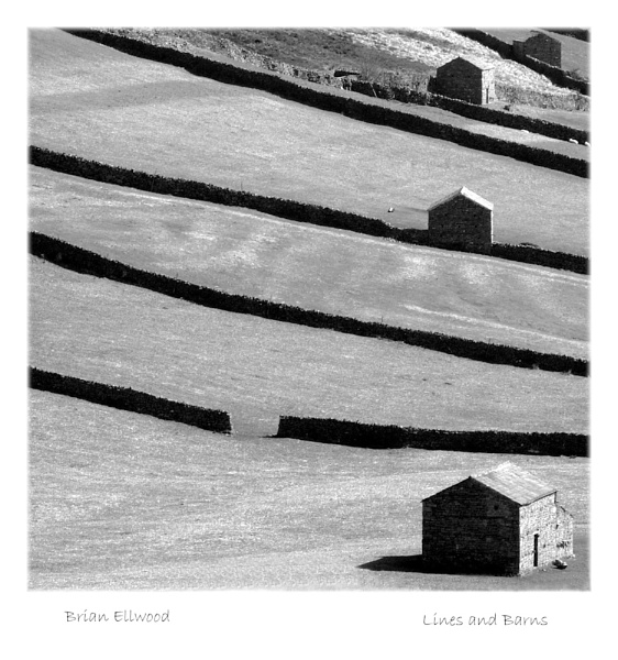Lines and Barns by BrianE