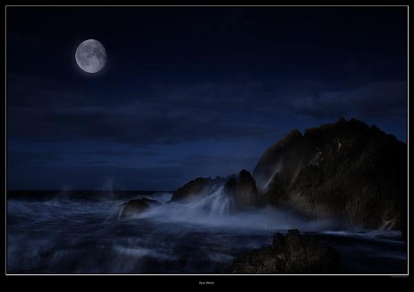 Blue Velvet by andy210966
