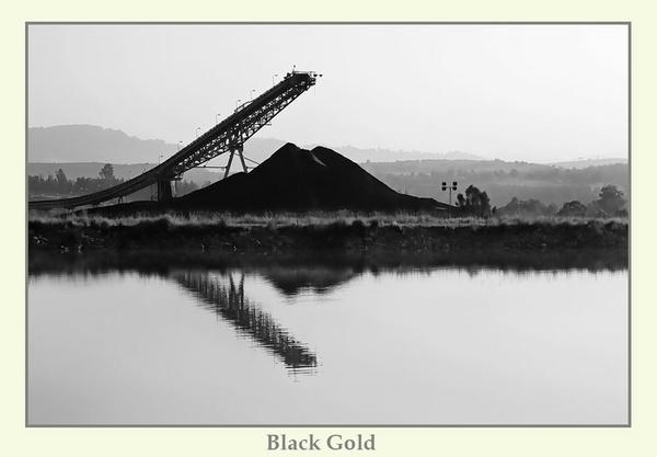 Black Gold by Joeblowfromoz