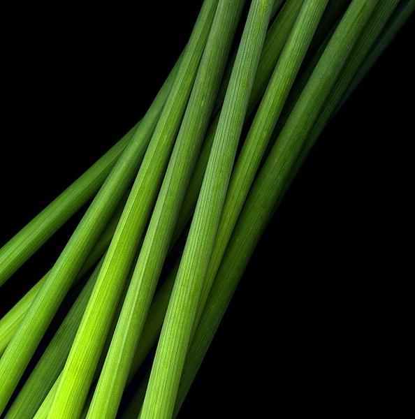 PURE GREEN ENERGY by magda_indigo